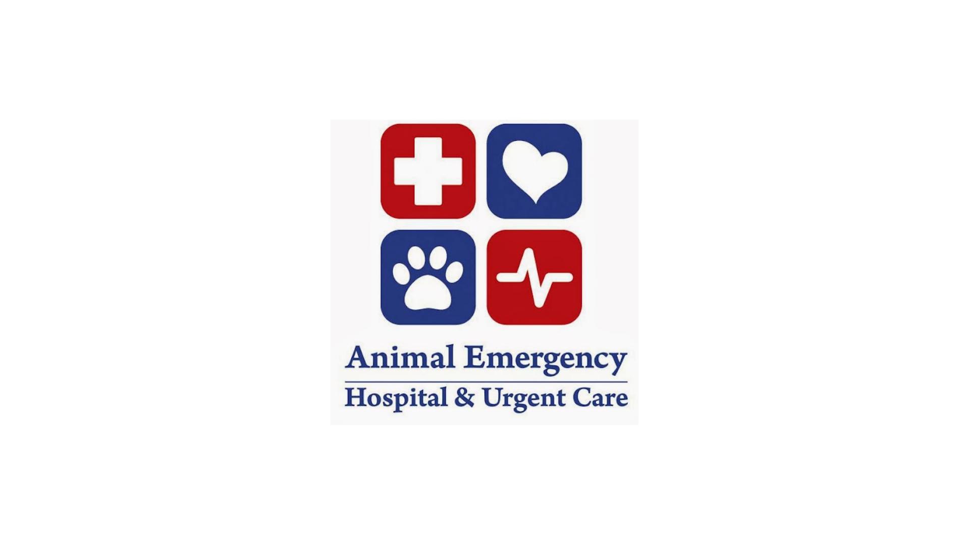Animal Emergency Hospital Square Logo